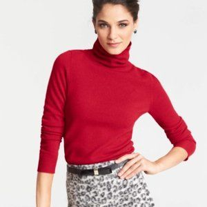 Ann Taylor Cashmere Sweater Turtle Neck Soft Small